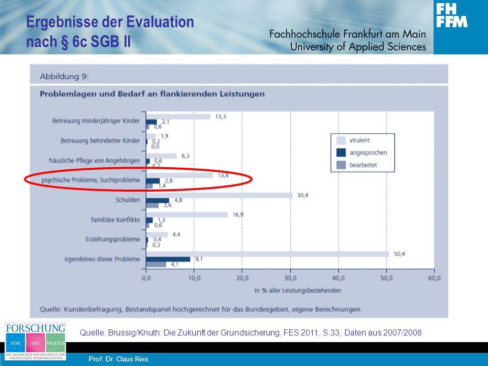 Ergebnisse der Evaluation nach § 6c SGB II