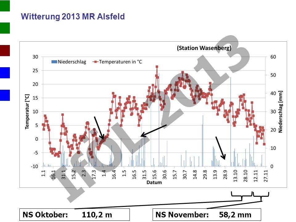 IfÖL 2013 Witterung 2013 MR Alsfeld NS Oktober: 110,2 m