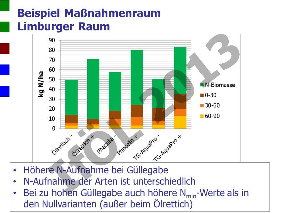 Beispiel Maßnahmenraum Limburger Raum