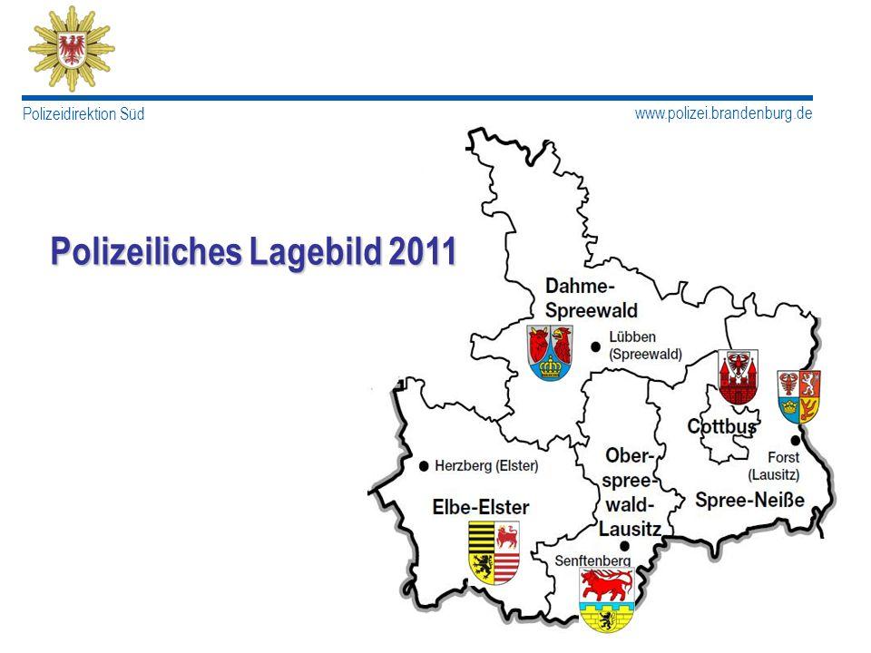 Polizeiliches Lagebild 2011