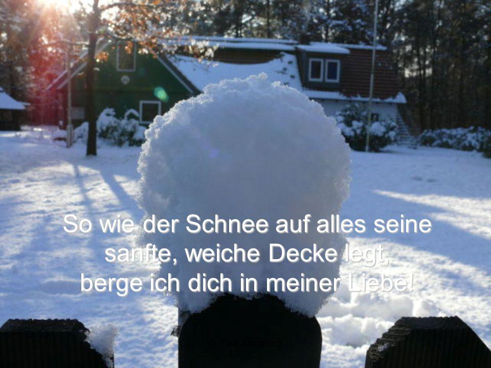 So wie der Schnee auf alles seine sanfte, weiche Decke legt, berge ich dich in meiner Liebe!