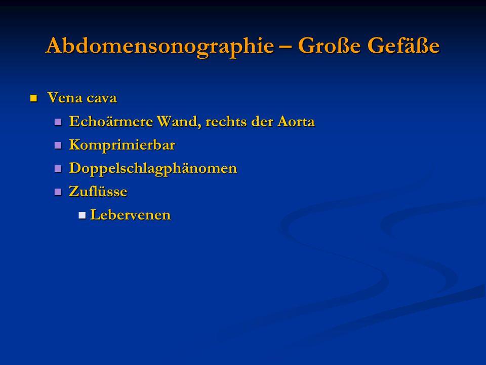 Abdomensonographie – Große Gefäße