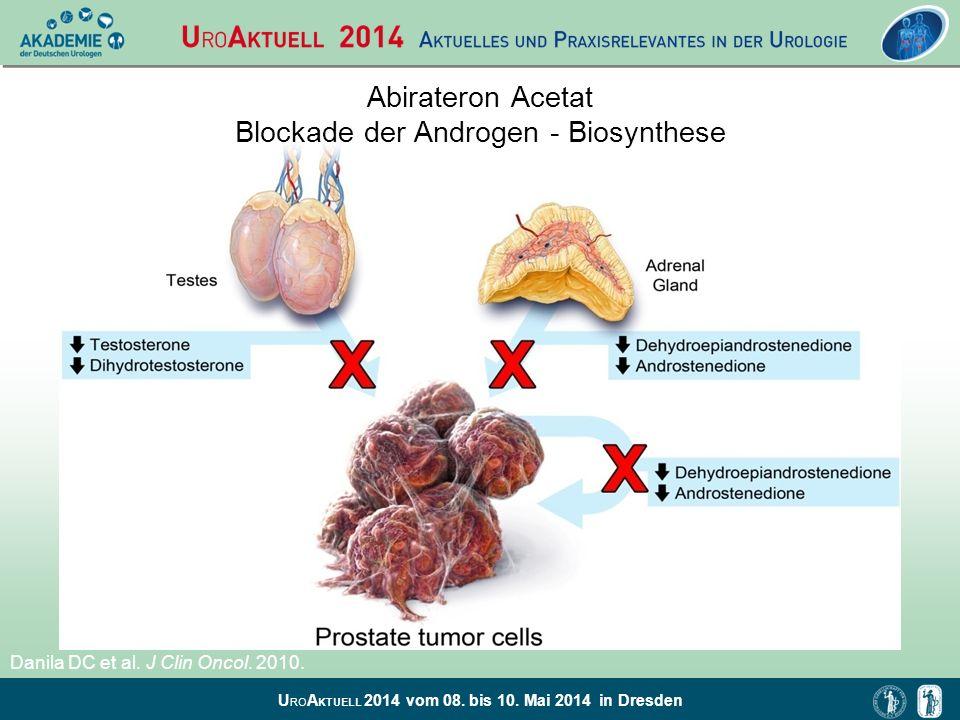 Abirateron Acetat Blockade der Androgen - Biosynthese