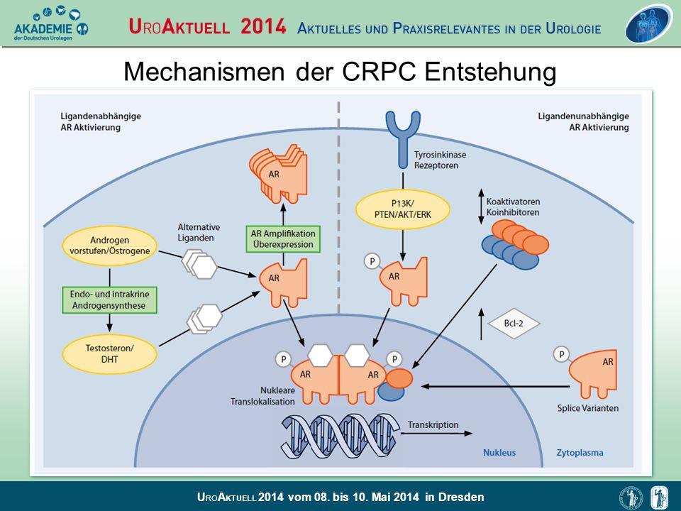 Mechanismen der CRPC Entstehung