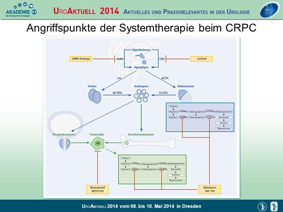 Angriffspunkte der Systemtherapie beim CRPC