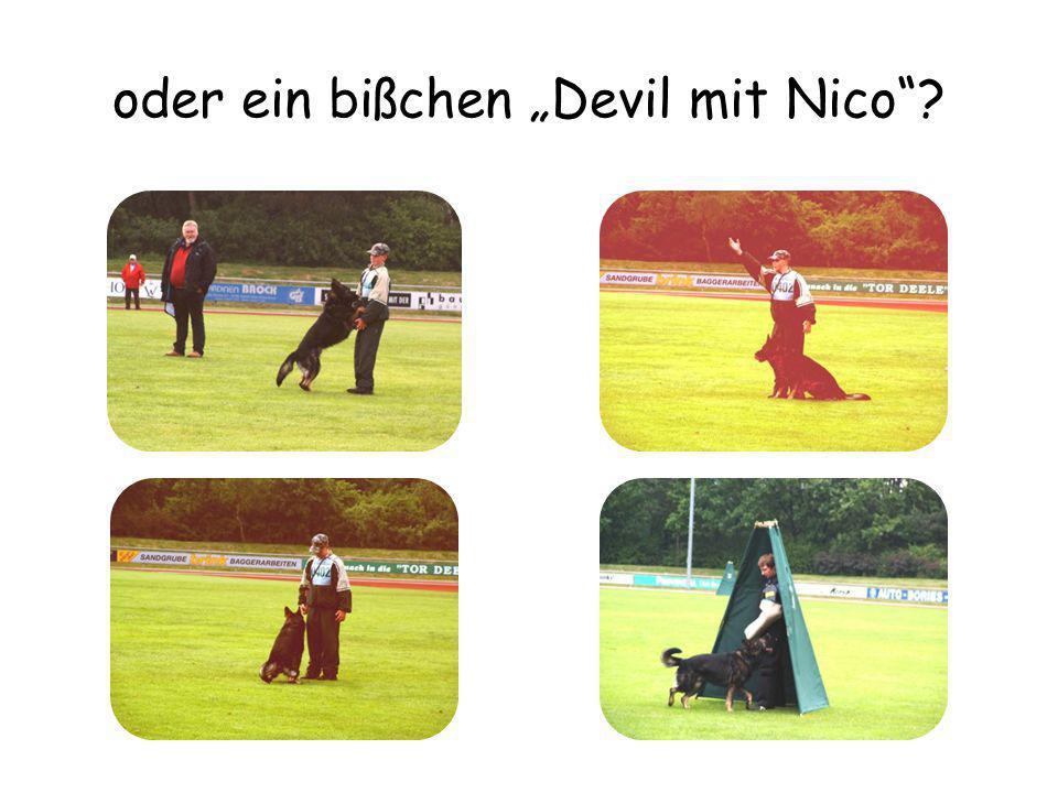 """oder ein bißchen """"Devil mit Nico"""
