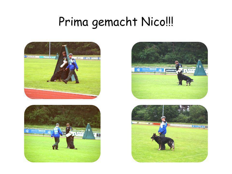 Prima gemacht Nico!!!