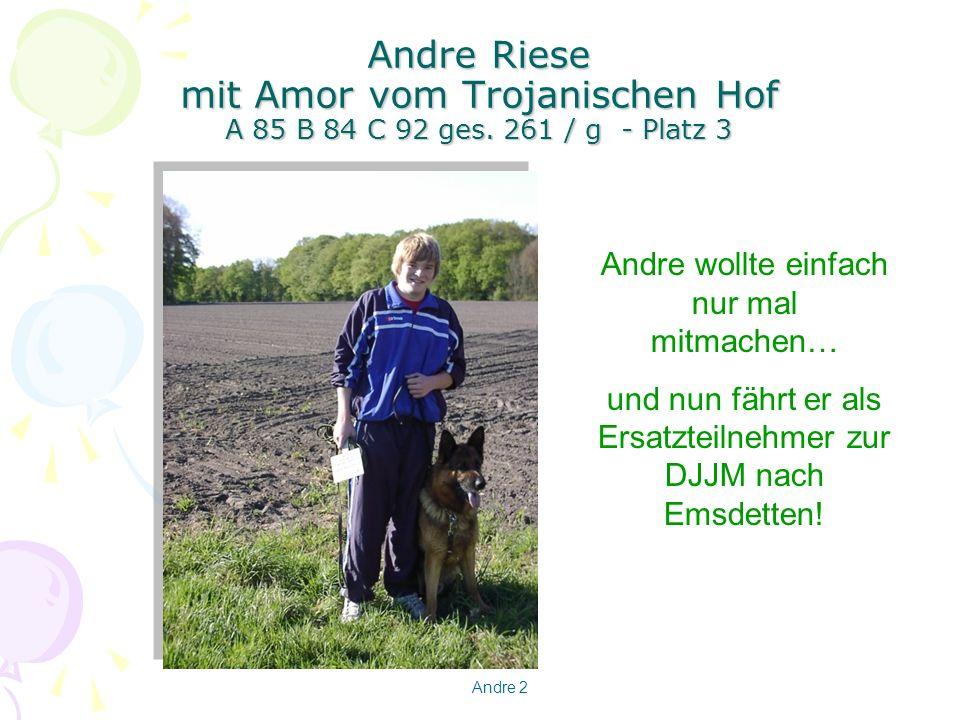 Andre Riese mit Amor vom Trojanischen Hof A 85 B 84 C 92 ges
