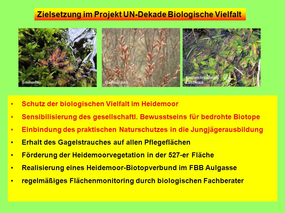 Zielsetzung im Projekt UN-Dekade Biologische Vielfalt