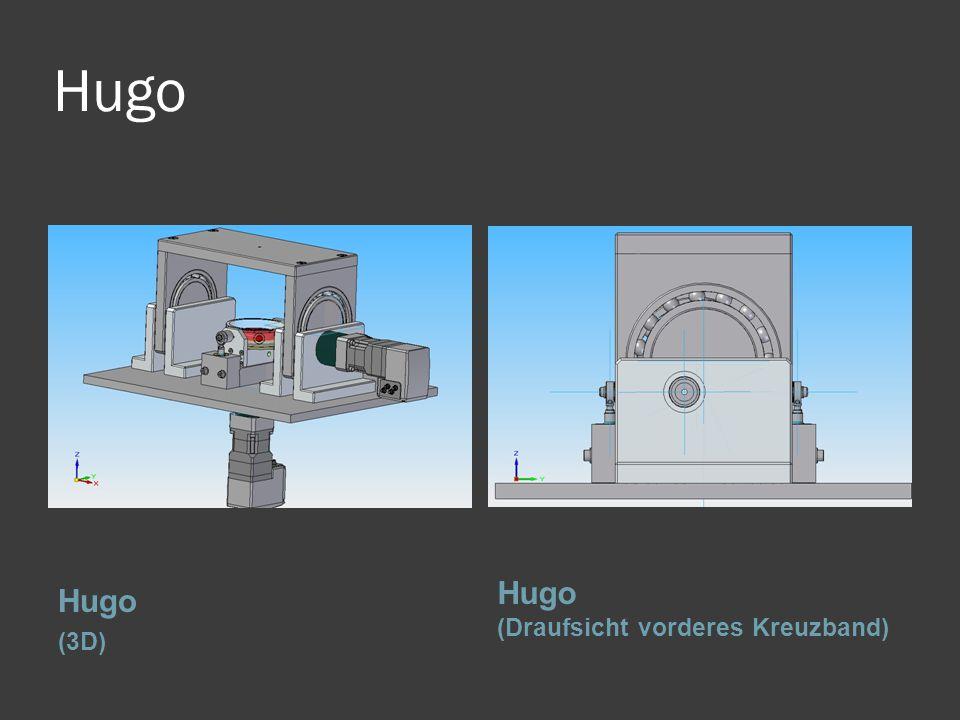 Hugo Hugo (3D) Hugo (Draufsicht vorderes Kreuzband)