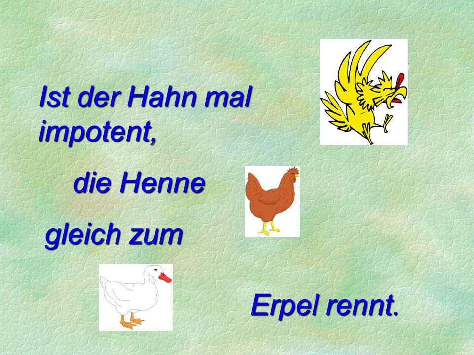 Ist der Hahn mal impotent, die Henne gleich zum Erpel rennt.