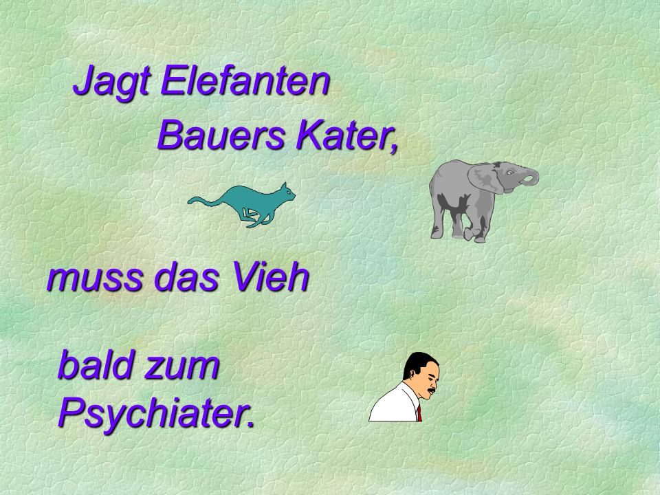Jagt Elefanten Bauers Kater, muss das Vieh bald zum Psychiater.
