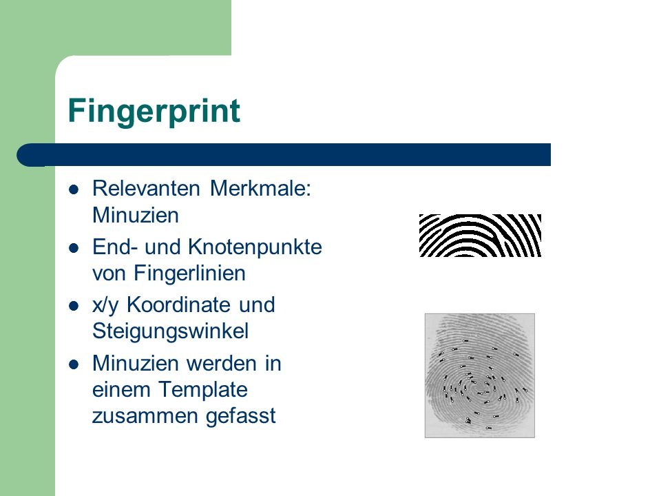 Fingerprint Relevanten Merkmale: Minuzien