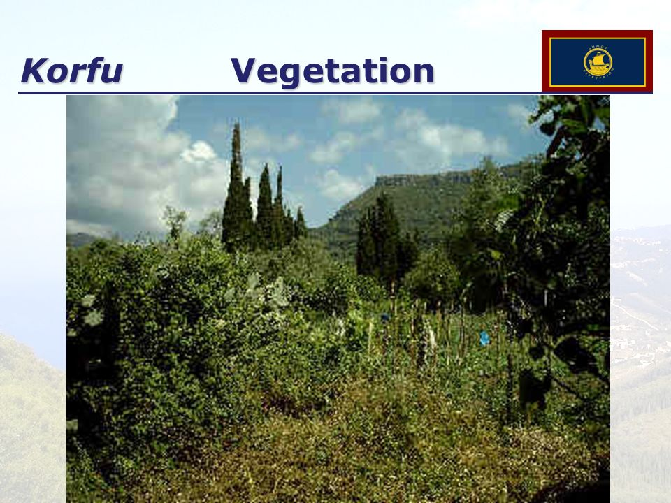 Korfu Vegetation