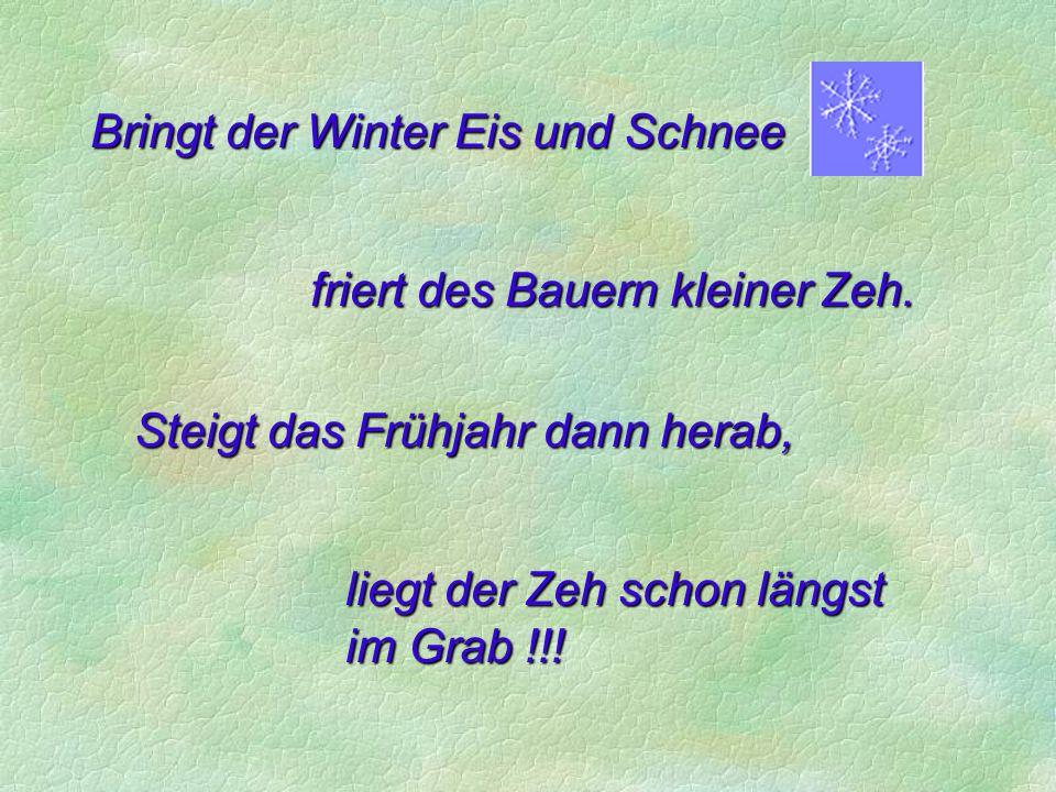 Bringt der Winter Eis und Schnee