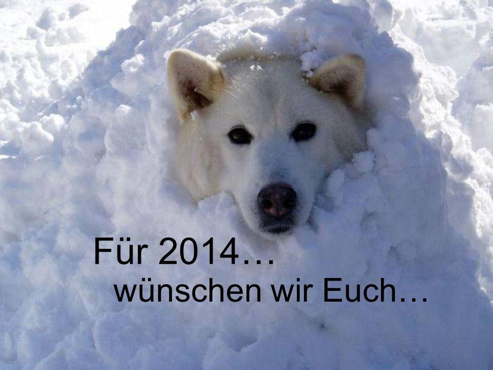 Für 2014… wünschen wir Euch…