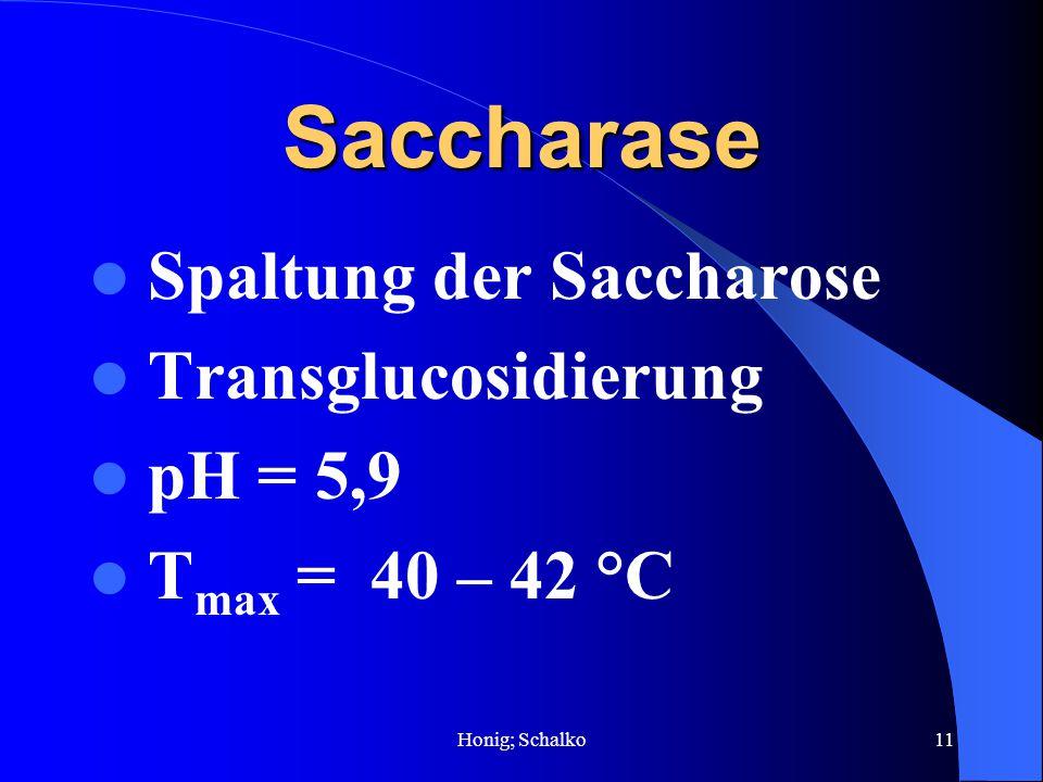 Saccharase Spaltung der Saccharose Transglucosidierung pH = 5,9