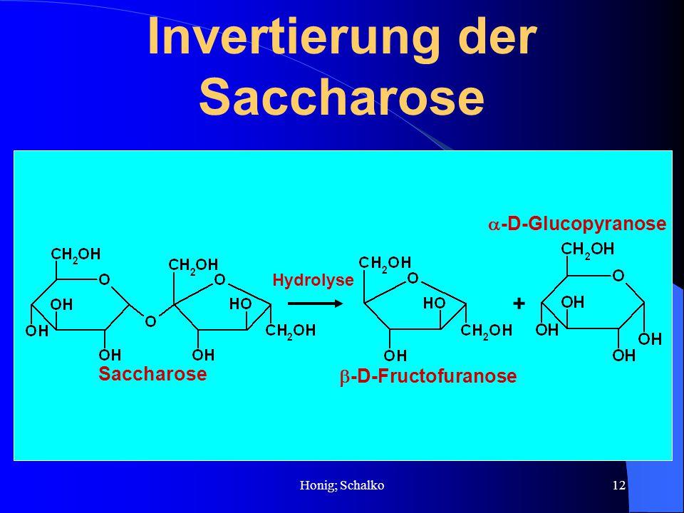 Invertierung der Saccharose