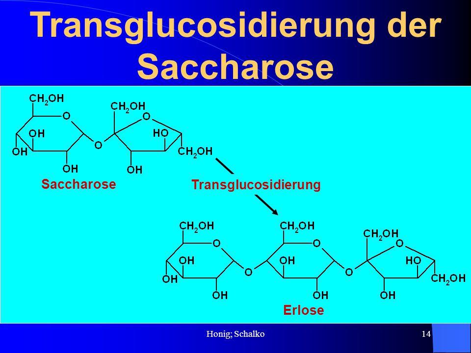 Transglucosidierung der Saccharose
