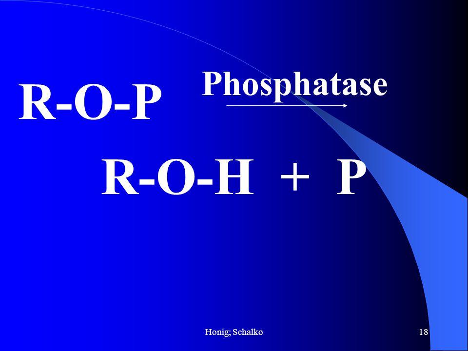 Phosphatase R-O-P R-O-H + P Honig; Schalko