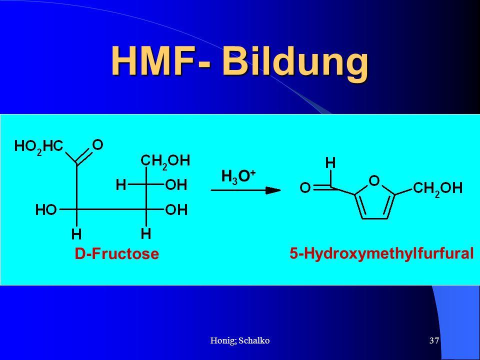 HMF- Bildung H3O+