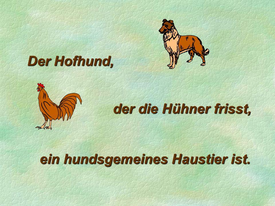 Der Hofhund, der die Hühner frisst, ein hundsgemeines Haustier ist.