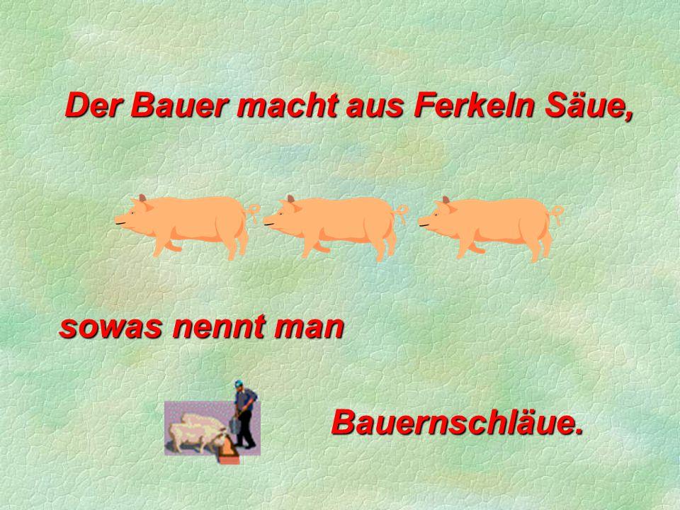 Der Bauer macht aus Ferkeln Säue,