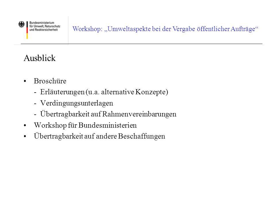 Ausblick Broschüre - Erläuterungen (u.a. alternative Konzepte)