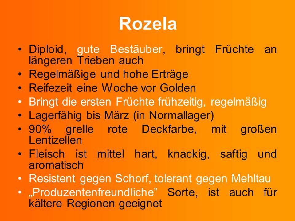 Rozela Diploid, gute Bestäuber, bringt Früchte an längeren Trieben auch. Regelmäßige und hohe Erträge.