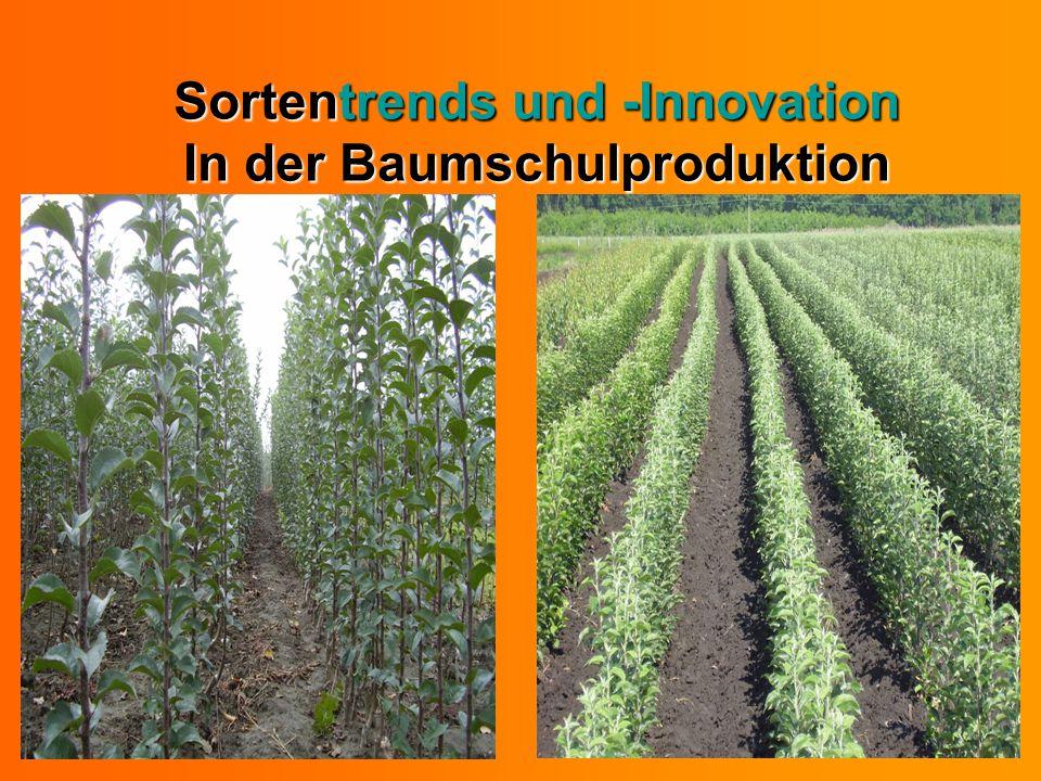 Sortentrends und -Innovation In der Baumschulproduktion