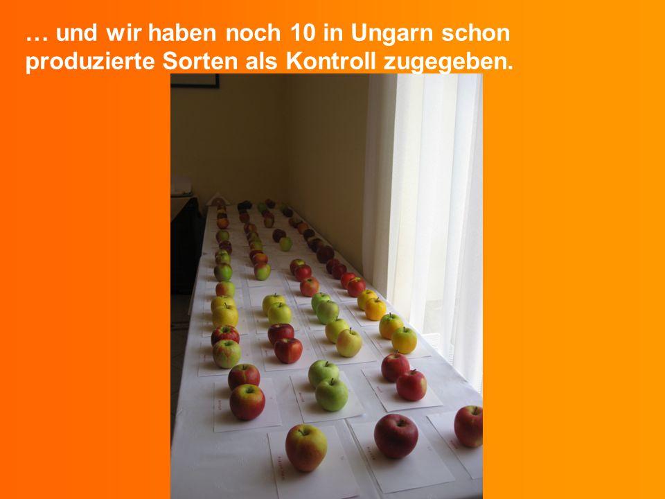 … und wir haben noch 10 in Ungarn schon produzierte Sorten als Kontroll zugegeben.