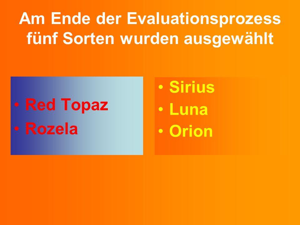 Am Ende der Evaluationsprozess fünf Sorten wurden ausgewählt