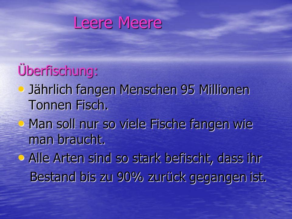 Leere Meere Überfischung: