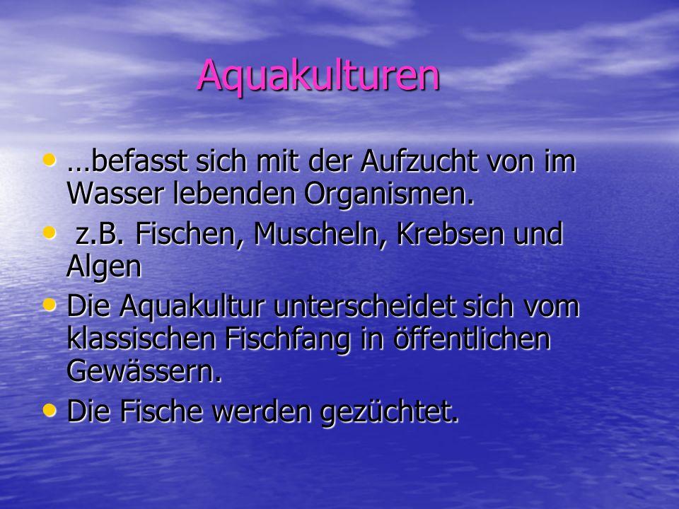 Aquakulturen …befasst sich mit der Aufzucht von im Wasser lebenden Organismen. z.B. Fischen, Muscheln, Krebsen und Algen.