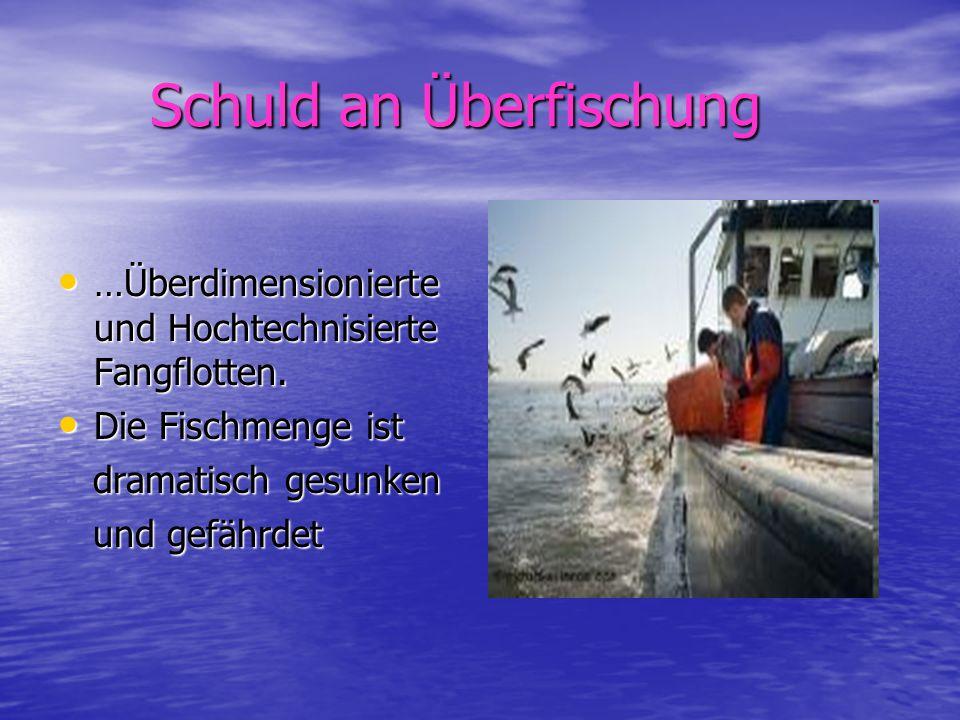 Schuld an Überfischung