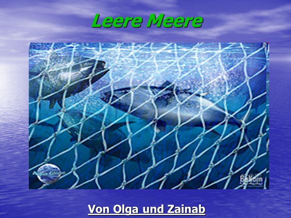 Leere Meere Von Olga und Zainab