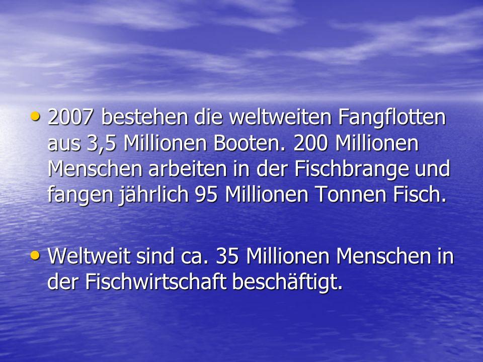2007 bestehen die weltweiten Fangflotten aus 3,5 Millionen Booten
