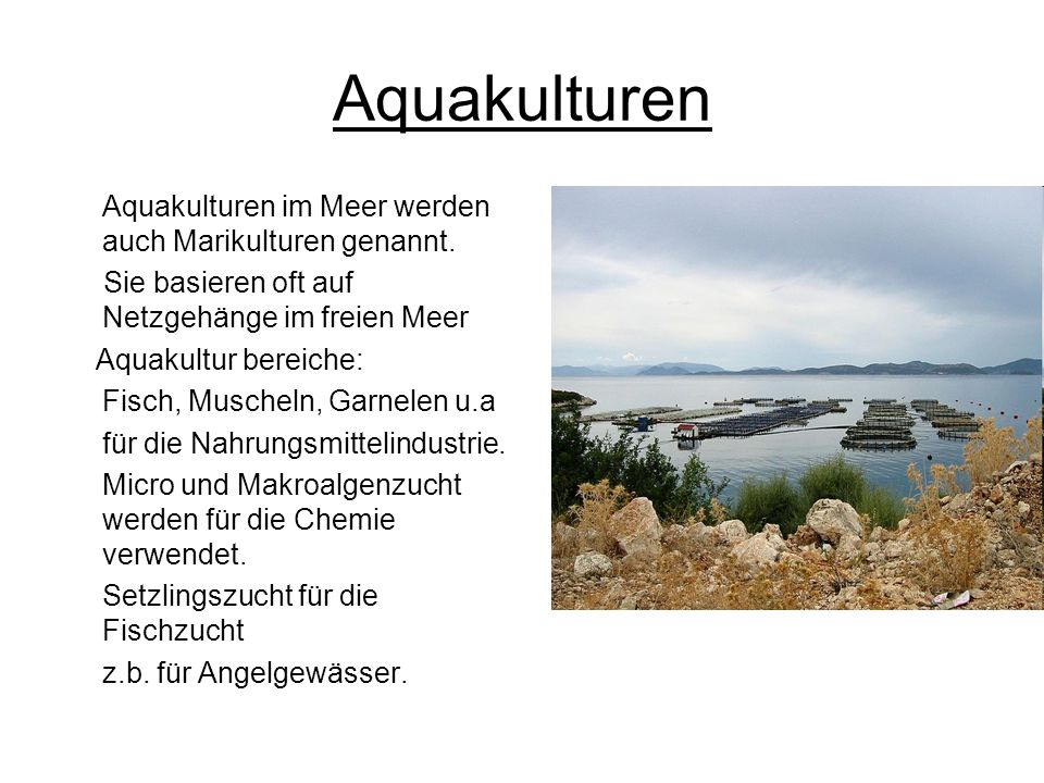 Aquakulturen Aquakulturen im Meer werden auch Marikulturen genannt.