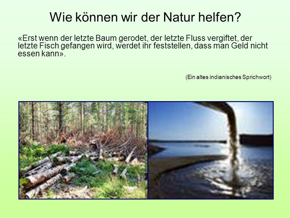 Wie können wir der Natur helfen