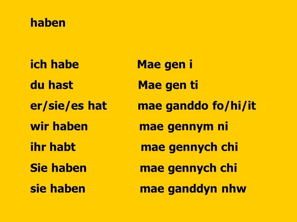 haben ich habe Mae gen i. du hast Mae gen ti. er/sie/es hat mae ganddo fo/hi/it.