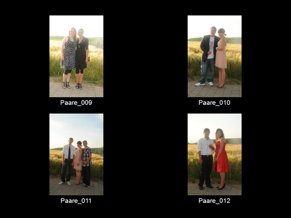 Paare_009 Paare_010 Paare_011 Paare_012