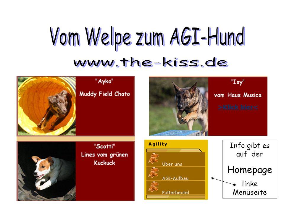 Vom Welpe zum AGI-Hund Homepage www.the-kiss.de Info gibt es auf der