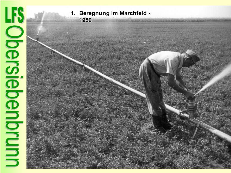 Beregnung im Marchfeld - 1950