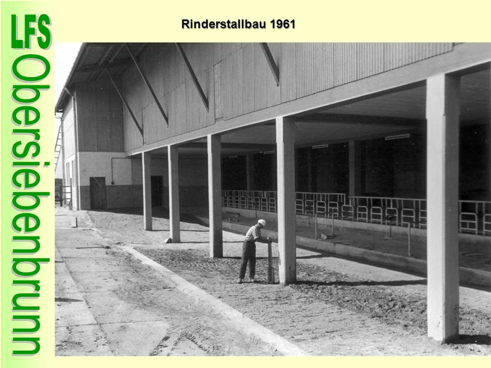 Rinderstallbau 1961 32