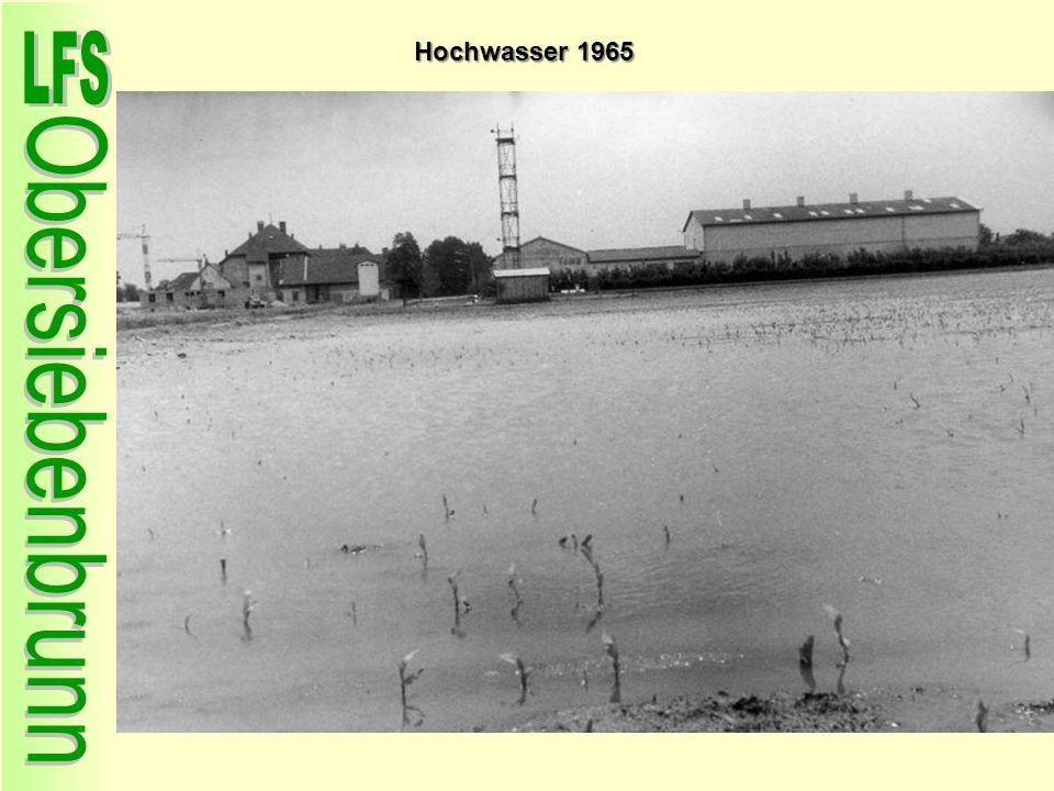 Hochwasser 1965 38