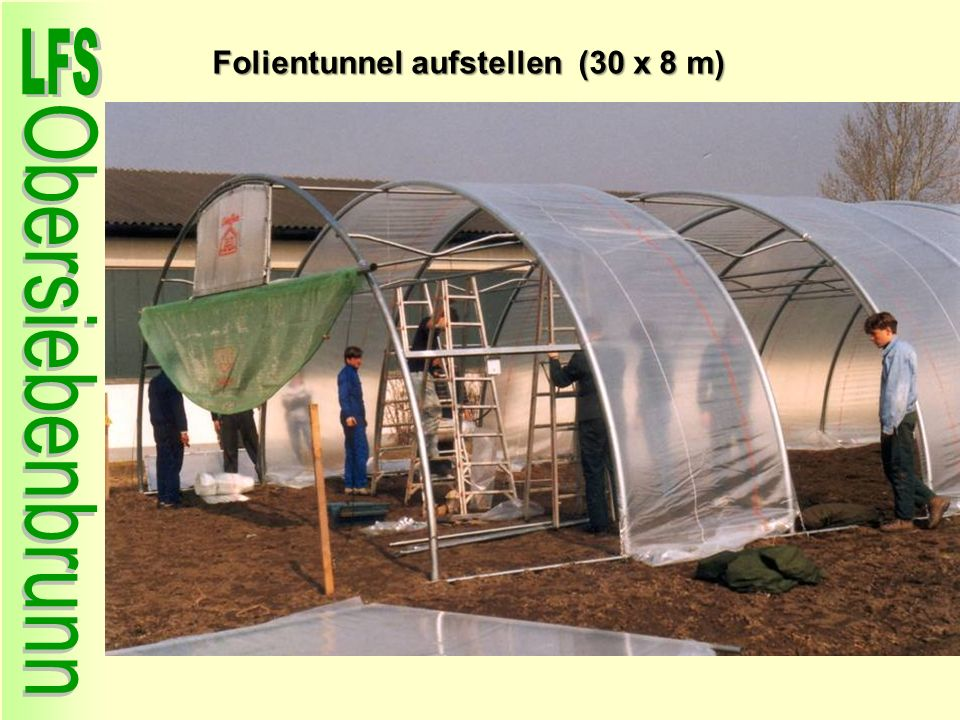 Folientunnel aufstellen (30 x 8 m)