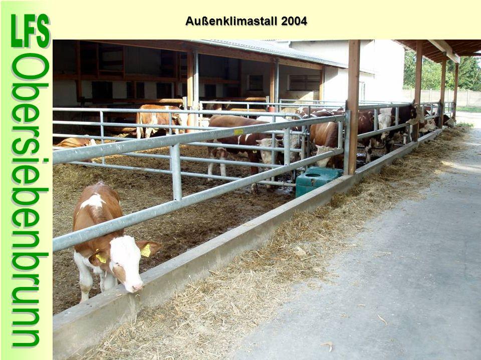Außenklimastall 2004 61