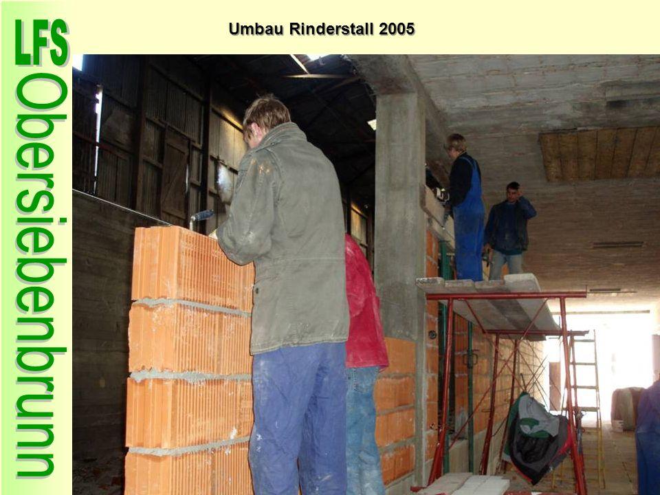 Umbau Rinderstall 2005 63