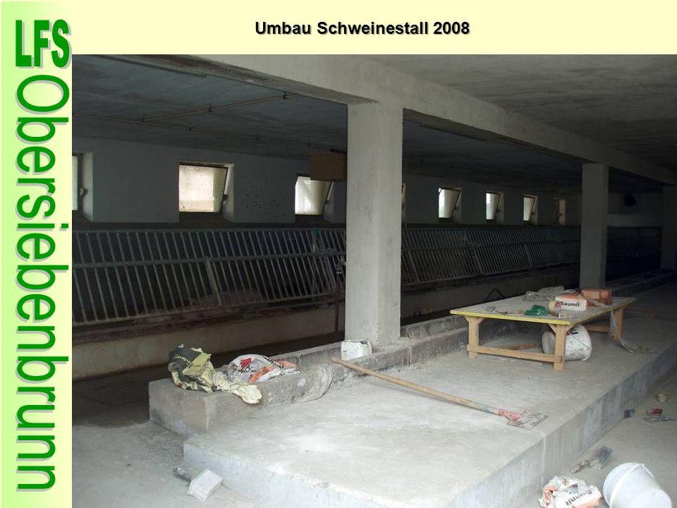 Umbau Schweinestall 2008 65