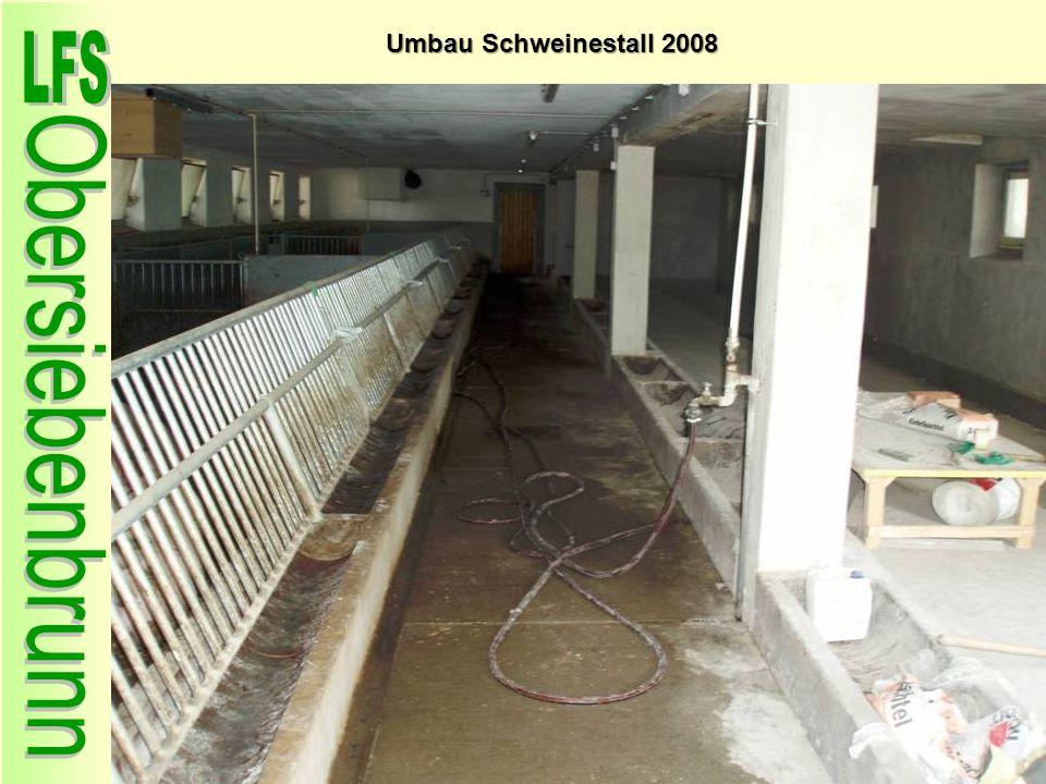 Umbau Schweinestall 2008 66